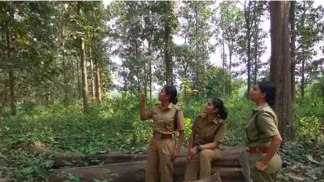 Woman forest officer transferred