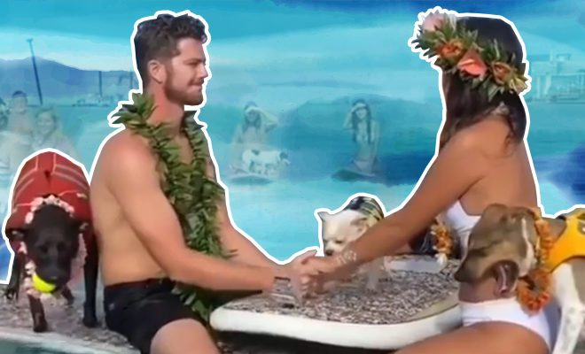 Bride-and-groom-get-married-in-style-in-the-middle-of-the-ocean,-check-out-VIRAL-video