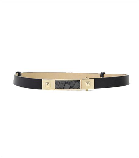 C&K belt_Hauterfly