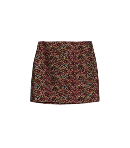 Zara Mini Skirt_Hauterfly