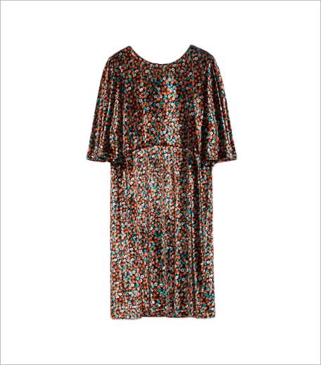 Zara VELVET DRESS_Hauterfly