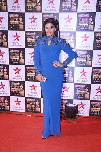 Raveena_Tandon_Star_Screen_Awards_Hauterfly