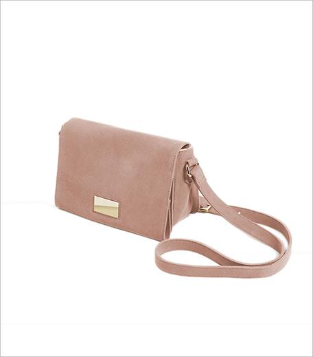 Zara Metallic Detail Leather Cross-Body Bag_Hauterfly