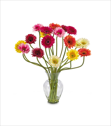 Nearly Natural Silk Daisy Arrangement_Hauterfly