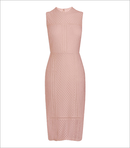 Next Lace Bodycon Dress_Hauterfly