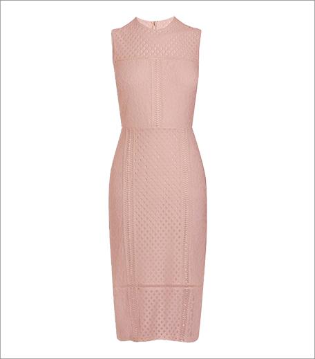 Next Lace Bodycon Dress_Hauterfly