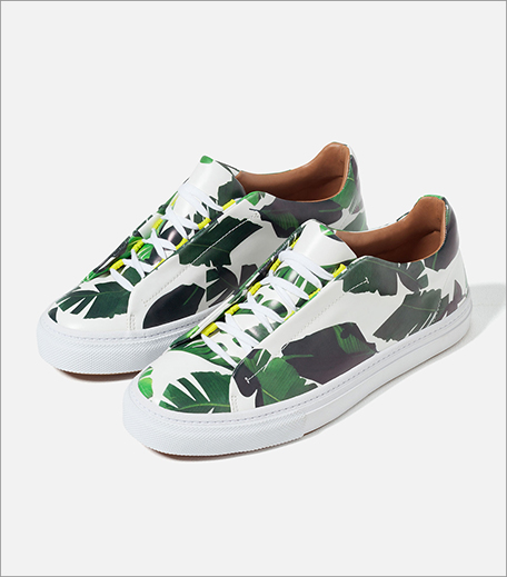 Zara Palm Print Sneakers_Hauterfly