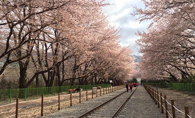 gyeonghwa-station-south-korea_Hauterfly