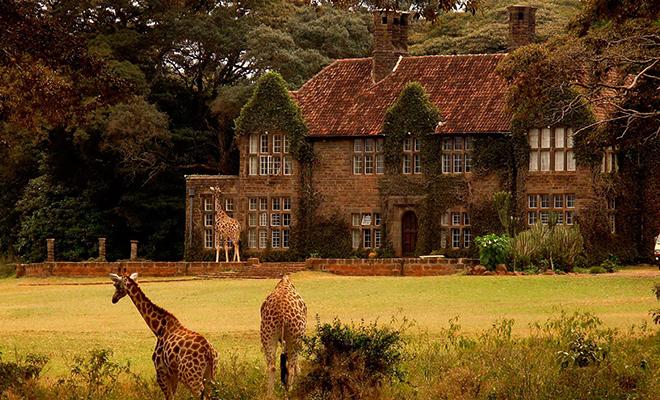 giraffe-centre-in-nairobi-kenya_hauterfly