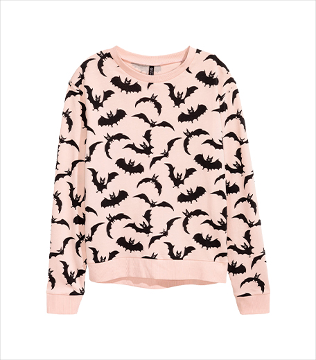 hnm-sweatshirt_Hauterfly