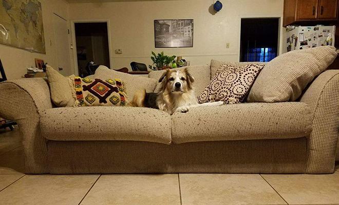 couch surfing-shipra arora-travel-hauterfly