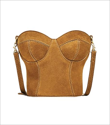 zara-corset-statement-bag_hauterfly