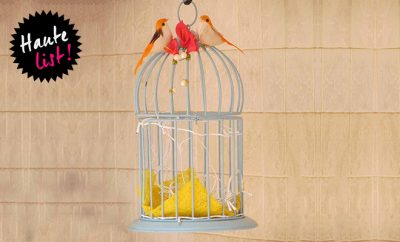 PropShop24 THE BIRDCAGE - WHITE_Featured_Hauterfly
