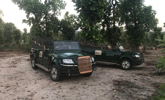 Taj Safaris in MP_Vehicles_Hauterfly