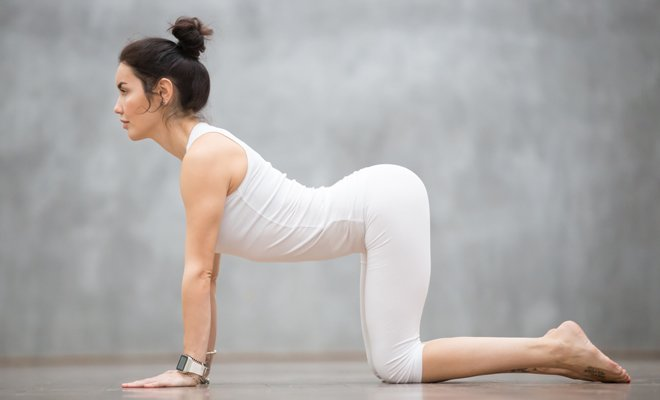 Cat – Cow Pose Marjariasana_Yoga for Inflexible_Hauterfly