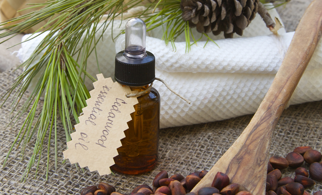cedar wood essential oil for hair