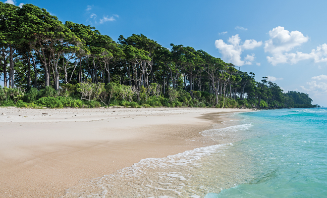 Laxmanpur beach Andaman Nicobar island