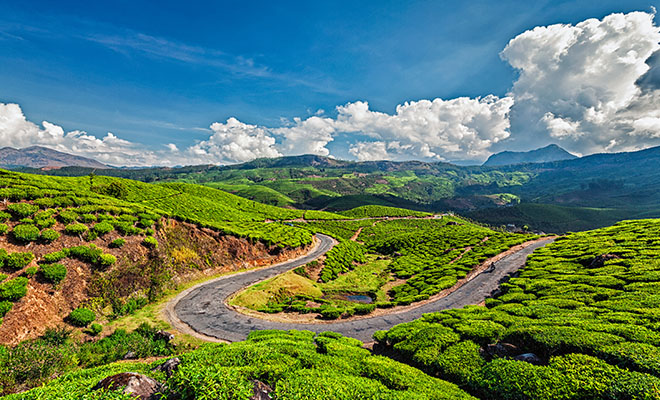 Munnar Kerala - Solo Travel