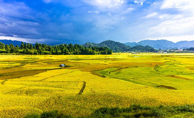 Ziro Arunachal Pradesh - Solo Travel