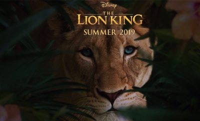lion_king_Hauterfly