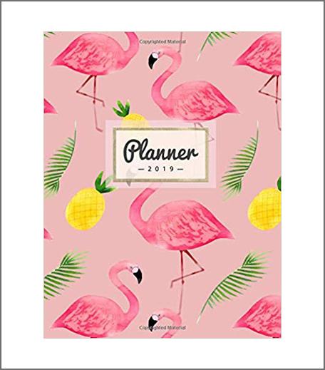 Planner 2019: Pineapple + Flamingo