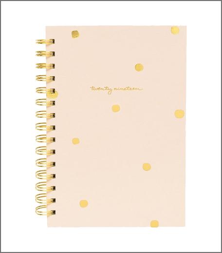 2019 Pink Dot Pocket Planner