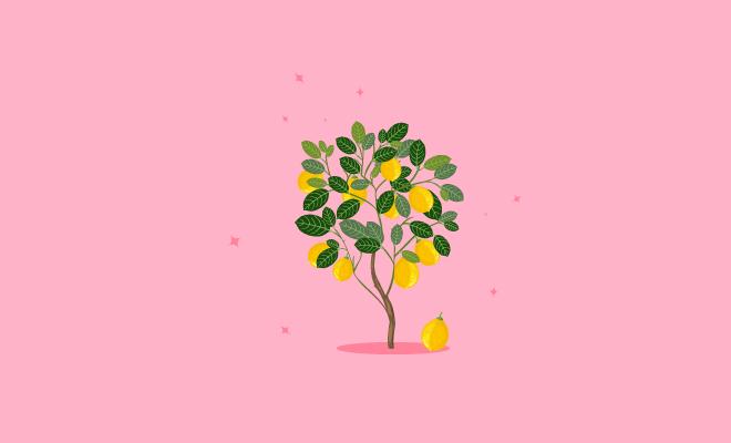 lies_parents_tell_us_lemon_tree_hauterfly