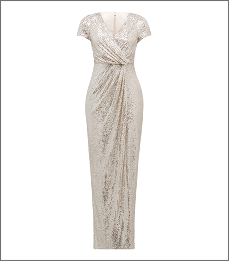 Hauterfly Christmas Gifting Silver Gown