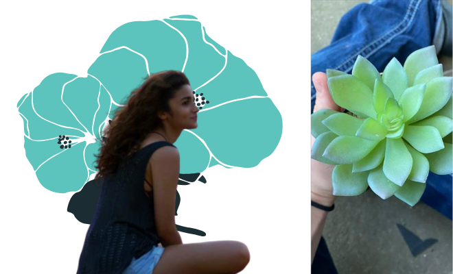 Why my relationship is like watering a plastic plant
