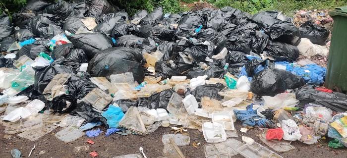 Goa Deepika Padukone Trash