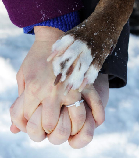 Paws and Hands engagement