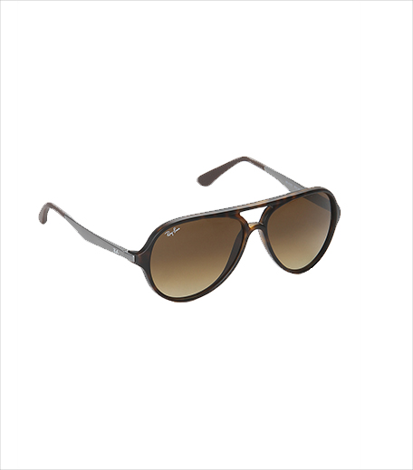 Ray Ban Aviator Sunglasses_Hauterfly